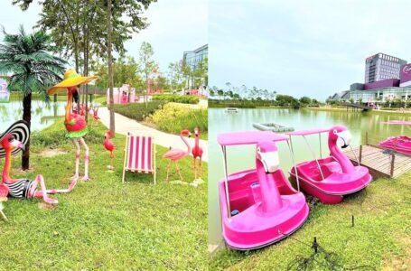 Boat Flamingo Kat Tepi Tasik Quayside Mall