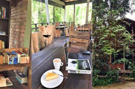 Cafe Hipster Tersembunyi Dalam Hutan