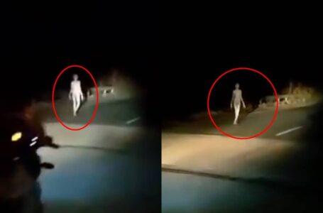 Viral Video Alien Merayau Tengah Malam Di Bumi